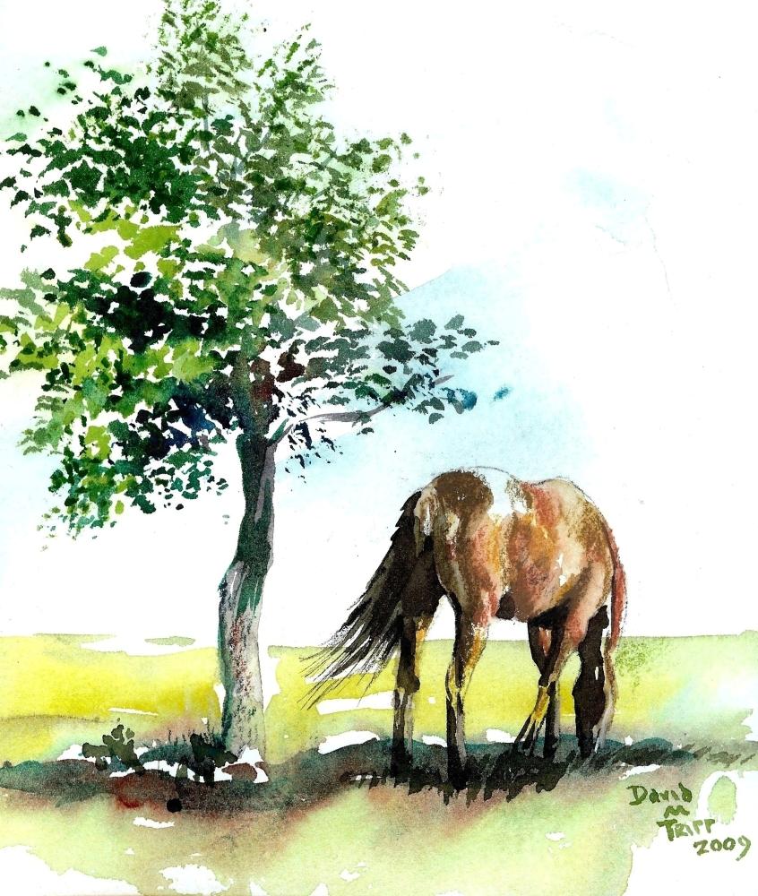 Impressionist Horse, January 26, 2010