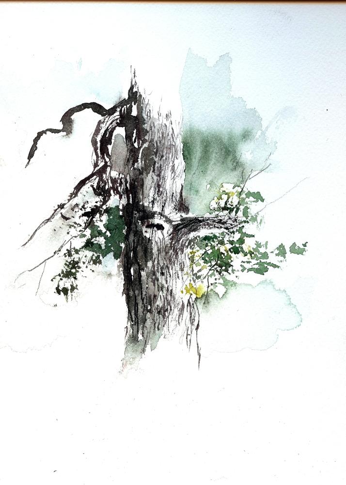 15-Minute Plein Air Watercolor Sketch, Oct 26