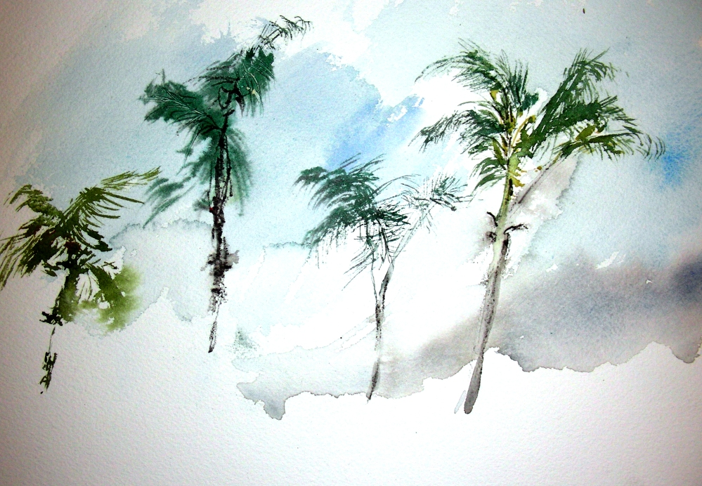 Sketching Los Angeles Palm Trees, January 22, 2011 (1/2)