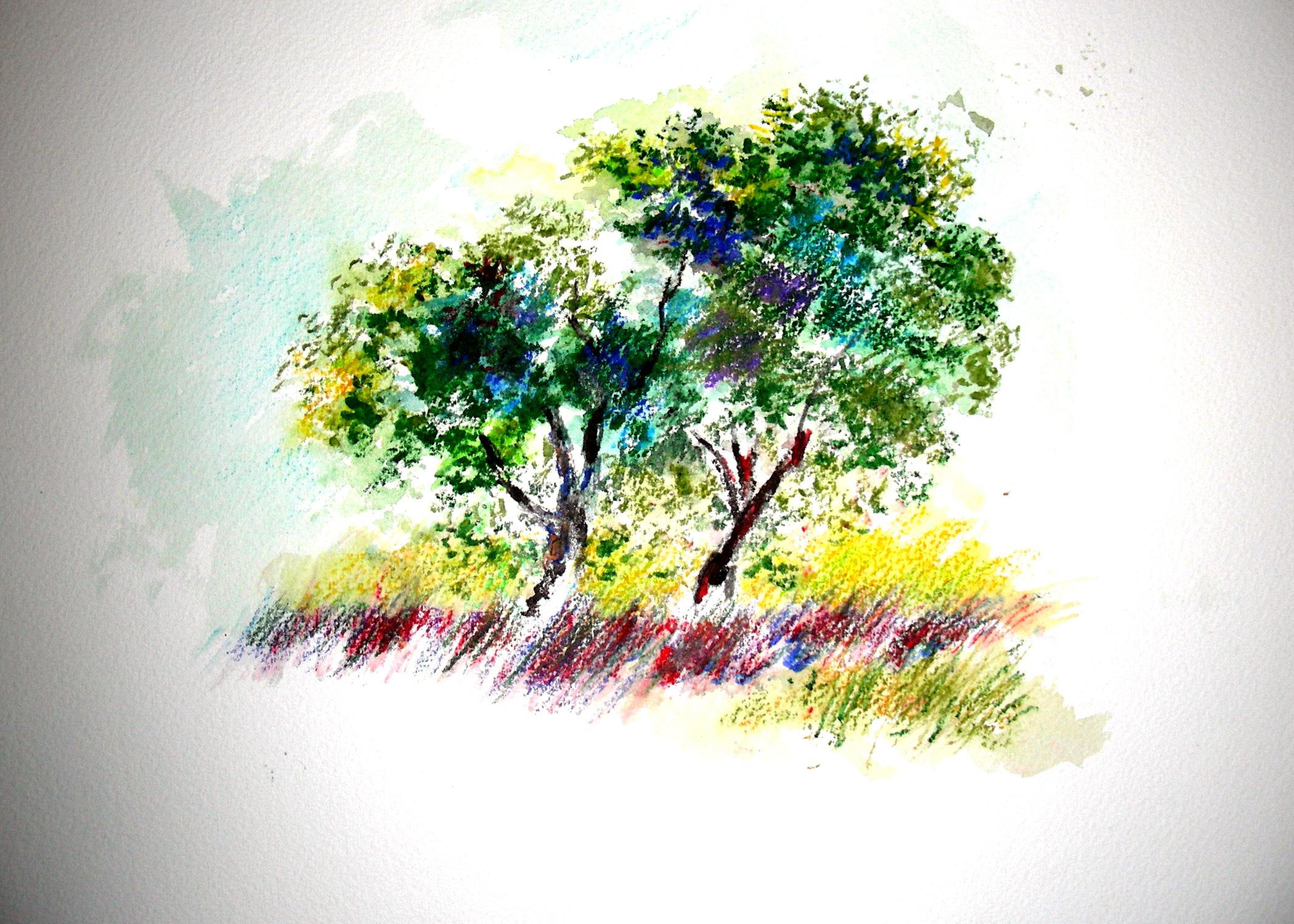 prismacolor watercolor pencils | Recollections 54 The Art ...
