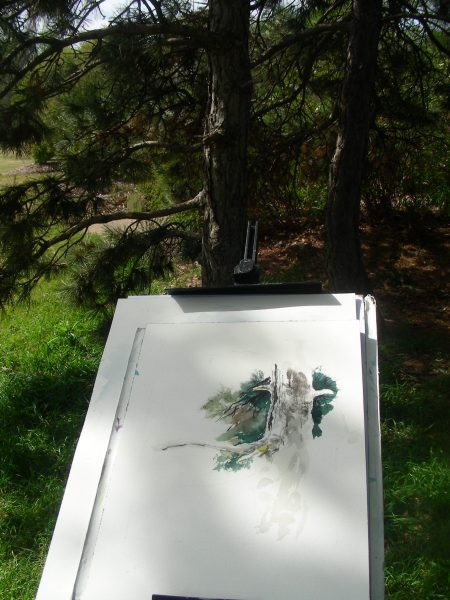 Tripp's easel in front of the pines