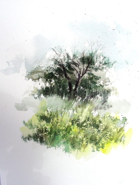 2nd attempt to Paint Wild Section of Tandy Hills Park, Fort Worth