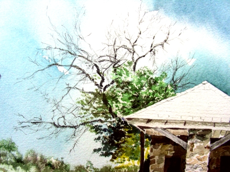 Tree  Study in Archer City Painting