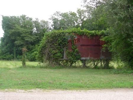 Overgrown Zephyr Billboard