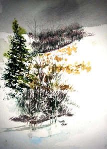 Rural Missouri Property in Winter