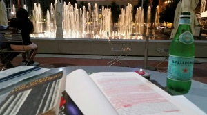 A Bottle of Pellegrino, a Book and my Journal