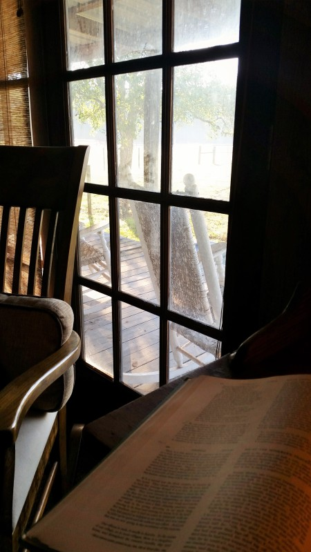 thoreau-window