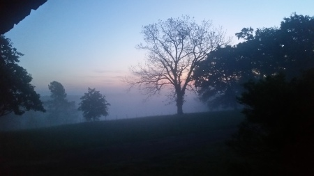 dawn5.jpg