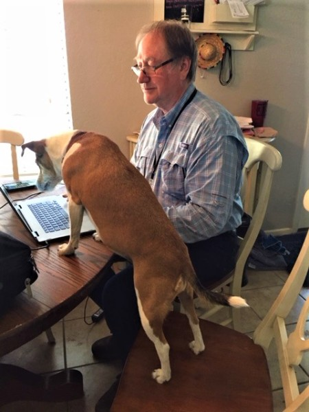 assistant editor