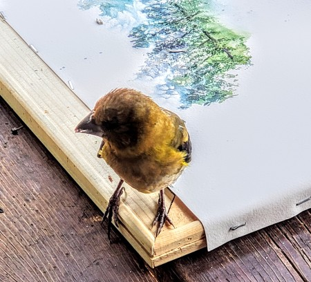 bird on painting